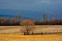 Flathead Valley-Approaching storm